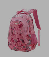 school bag/back packs
