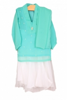 Mushrooms Sea Green Chiffon Suit
