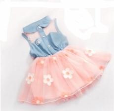 16019893740_baby-girl-frock-design-frock-for-girls-kids-frock-design-latest-frock-designs-for-babies-baby-girls-online-shopping-in-pakistan-baby-frock-online-shopping-in-pakistan.jpg