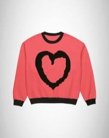 16027718180_Sweatshirts-for-girls-sweatshirt-online-shopping-in-pakistan_(2).jpg