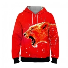 16039640700_hoodies-men-hoodies-branded-hoodies-online-shopping-in-pakistan.jpg