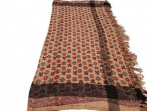 16074222620_RWSP-(37)_650,_velvet,_printed,_Women_shawl_,_winter_collection_,_party_wears_,_pashmina_shawls_,_women_chaddar._printed_shawl,,.png
