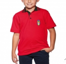 16254913030_Bindas_Collection_Exclusive_Half_Sleeves_Summer_Pk_Jersey_Polo_For_Kids_3.jpg