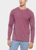 15426301962_virgin-teez-sweat-shirt-pack-of-4-full-sleeves-t-shirts-3706528596056_grande.jpg